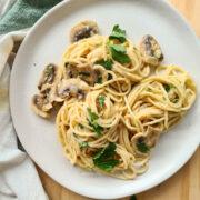 Plate of creamy mushroom pasta