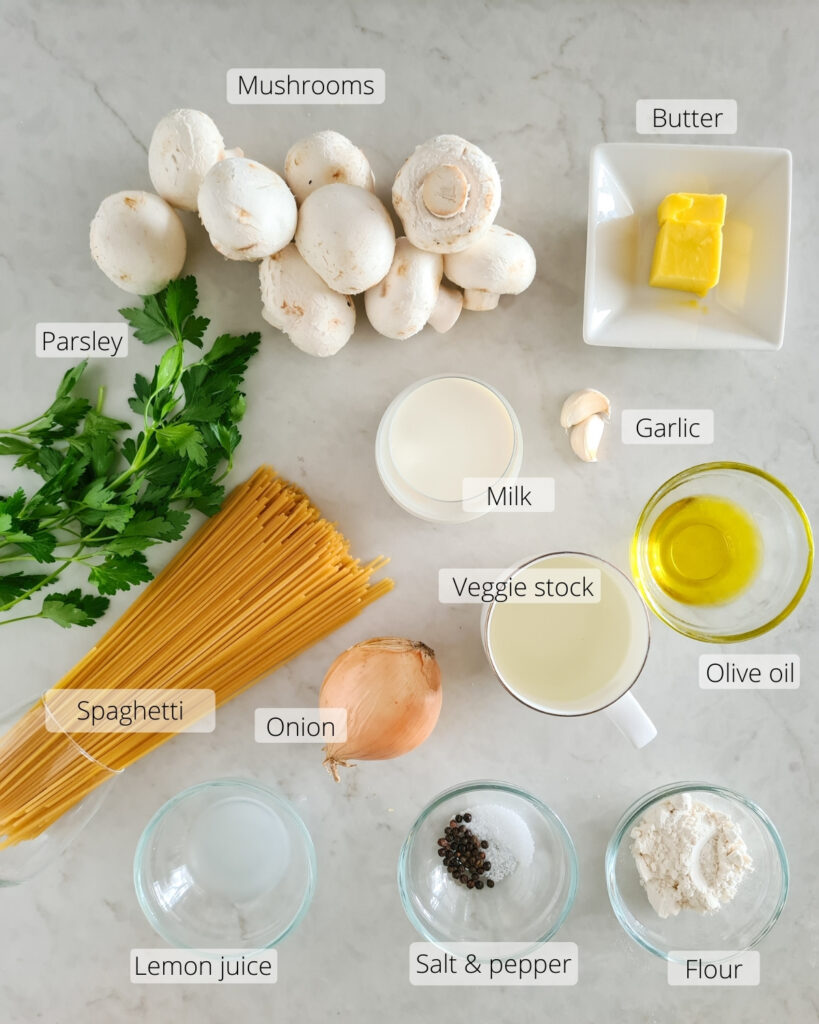Overhead shot of all ingredients required for creamy mushroom pasta
