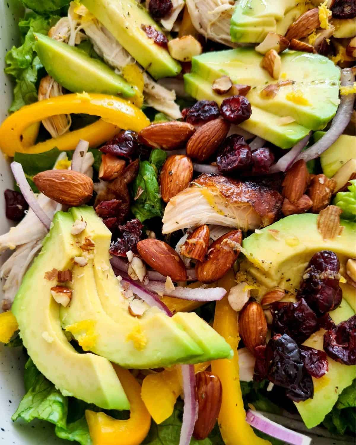 Extrem close up, focusing on roasted almonds, dried cranberries, chicken and avocado