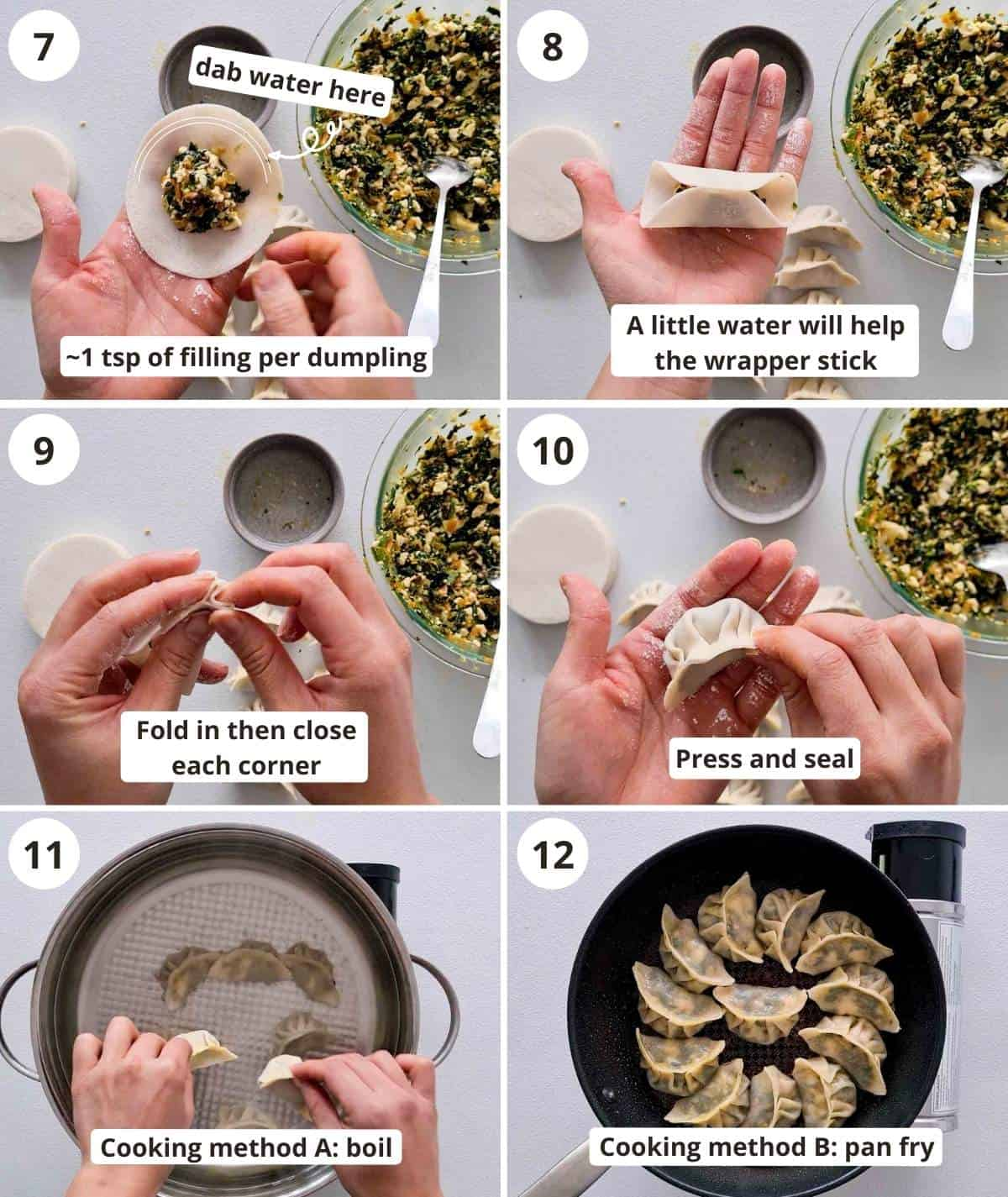 Step by step instructions for wrapping and cooking the dumplings